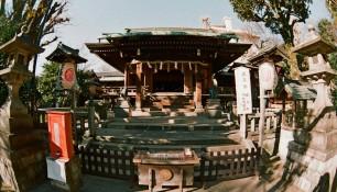 Токио, Япония (Полина Котова) | Самостоятельные путешествия ChanceToTrip.com