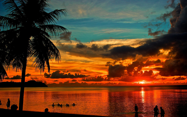 Sea-Sunset-Palm-Tree-Guam