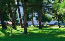 Гамаки в парке, Батуми, Грузия | Vladimir Fil'varkiv