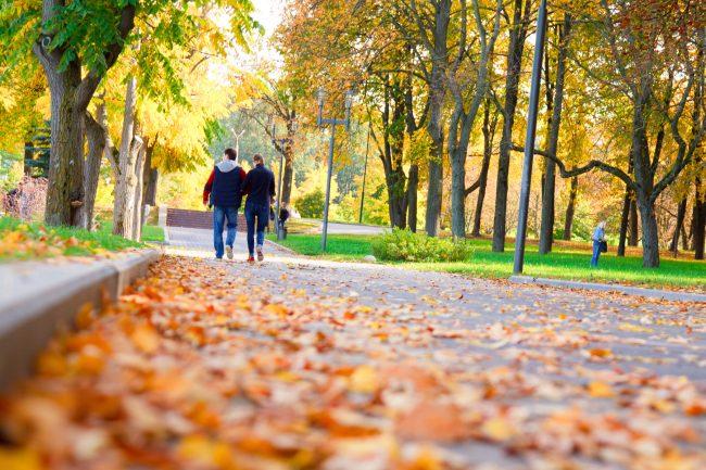 Осень, Парк Победы, Минск   ChanceToTrip.com by Vladimir Filvarkiv