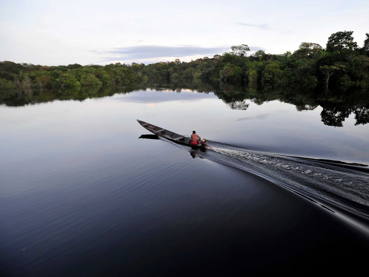 boat-across-the-amazon-river-the-worlds-second-largest-river-and-home-to-more-than-one-third-of-the-worlds-animal-species