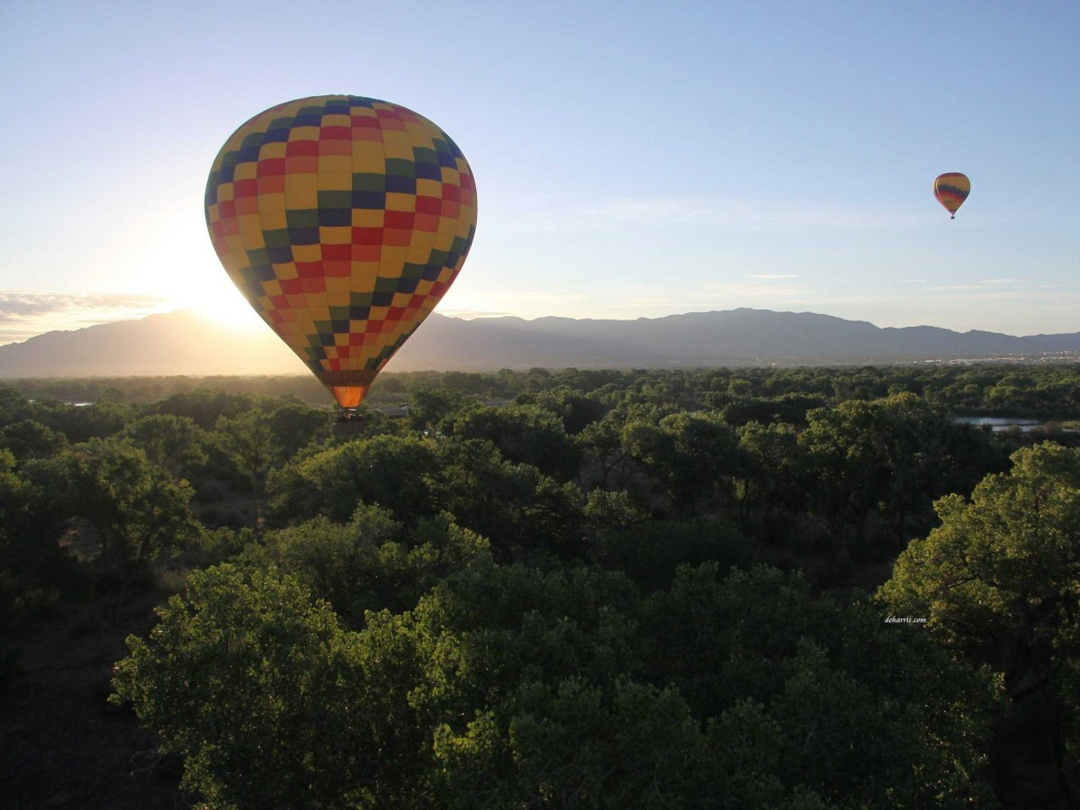 ride-in-a-hot-air-balloon-above-the-rio-grande-in-albuquerque-new-mexico-the-city-hosts-an-international-balloon-fiesta-but-you-can-also-take-tours-in-hot-air-balloons-year-round