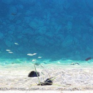 Прозрачная вода у края пирса. Бали, Крит, Греция | Елена Гежа