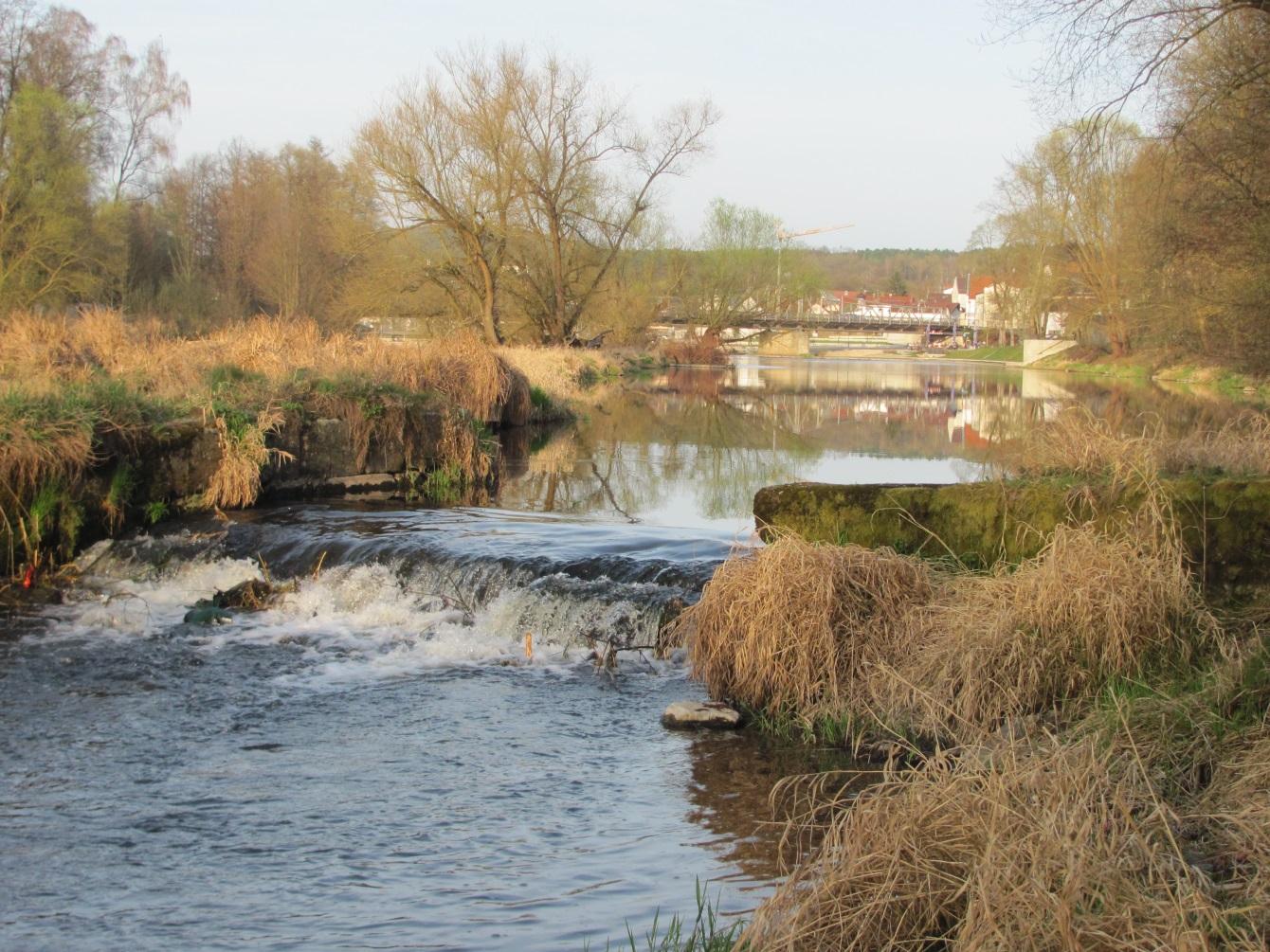 Река Реген, Родинг